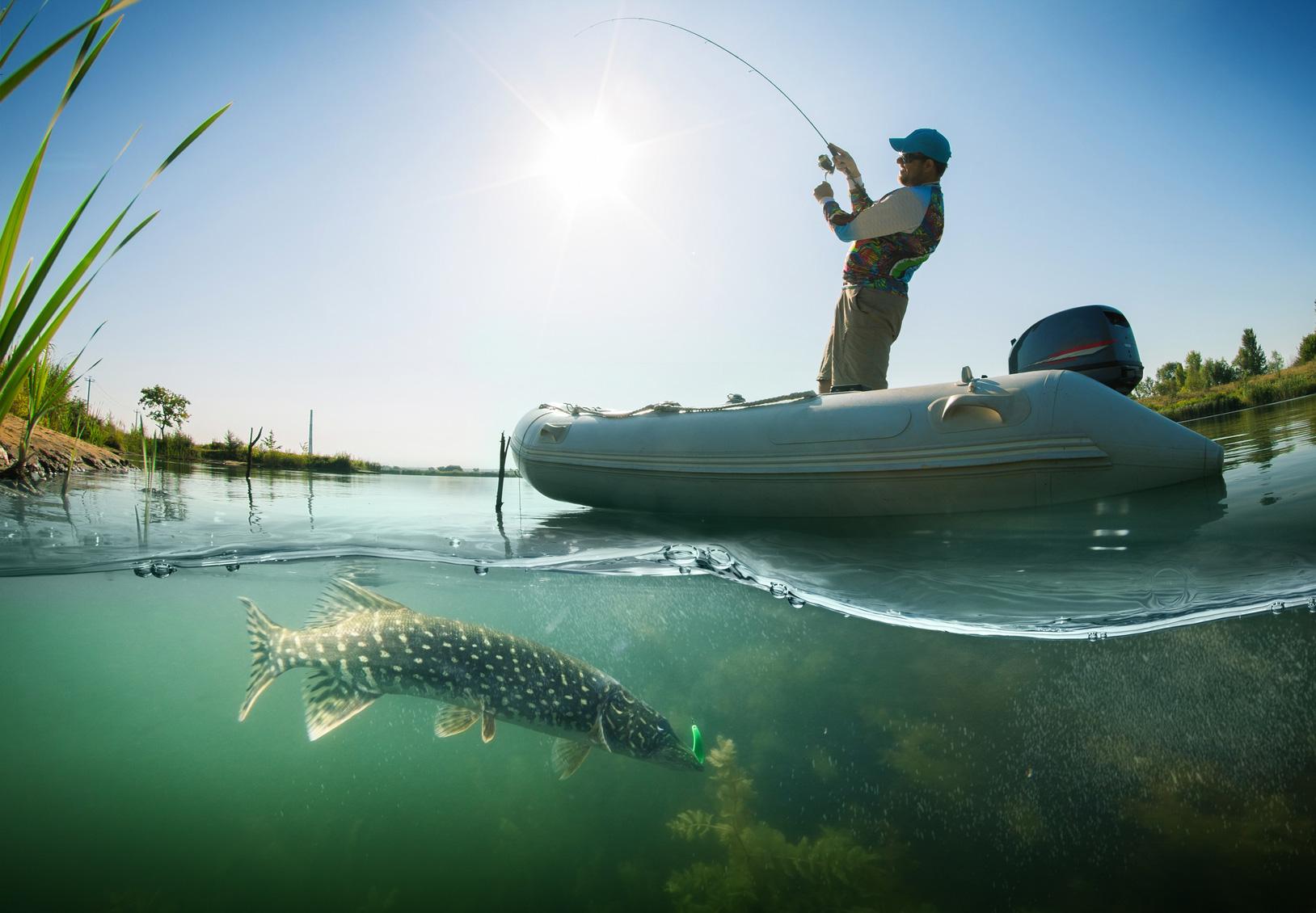 Gute Werbung – erfolgreiche Werbung: Der Köder muss dem Fisch schmecken, nicht dem Angler.